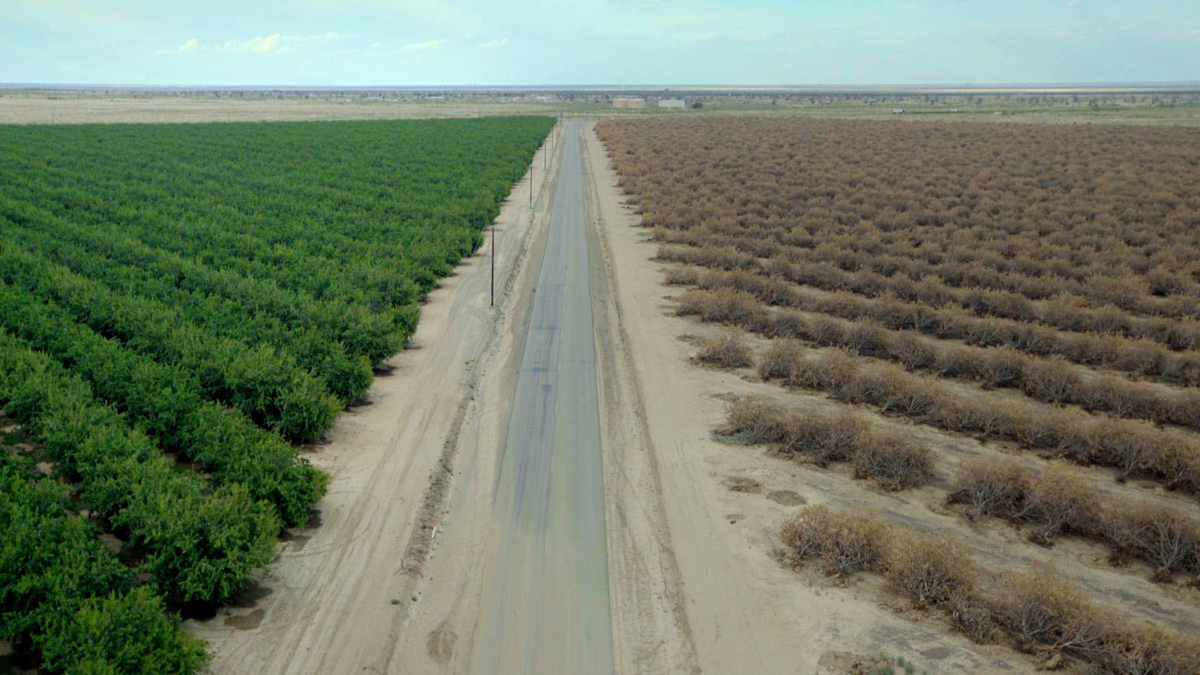 Water & Power: A California Heist – Samuel Painter shot this documentary for director Marina Zenovich about the Golden State's debilitating groundwater crisis.